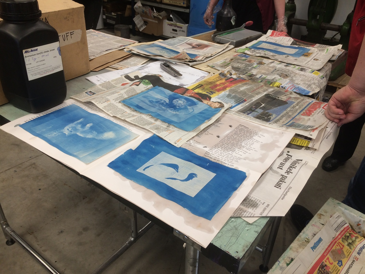 fig 29. Drying cyanotypes on a heap of newspapers.