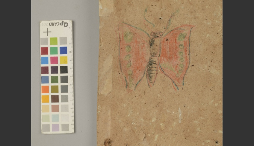 ill 28. A butterfly was found on strip III.