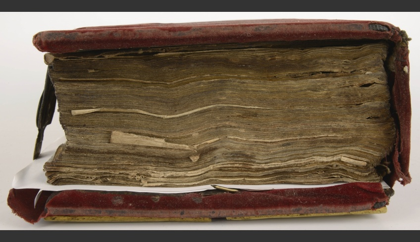 ill 4. Deformation of the covers and the block of the binding was minimal after lyophilization …