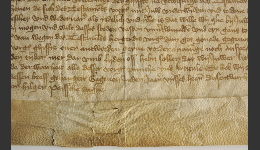 fig 7. An example of damages on parchment, documented in the atlas of parchment damages. Parchment that has considerably degraded follicle shafts, TLA.230.1.BB-74/iii.